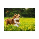 Running Dog. Wooden Puzzles,Fun Puzzles,Decompression puzzles family leisure,500PCS,Wooden.